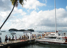 Samana Humpback Whale Watching Sightseeing Tours and Maritime excursions all over the bay of Samana... Leaving from the town of Santa Barbara de Samana.