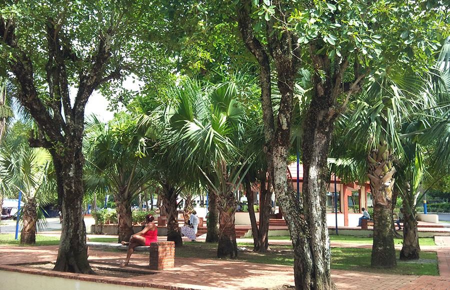 Central Park of Samana - Where all the Government offices are.