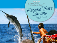 Deep Sea Sport Fishing in Samana, Dominican Republic. Deep Sea Fishing in Samana for Marlin, Mahi Mahi, Dolphin, Barracuda, Sailfish, Yellow Fin Tuna, Tarpon, and Dorado in Samana Domnnican Republic.