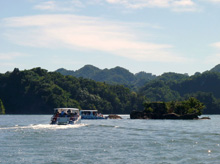 Boat Tour in Samana Bay to Los Haitises National Park and Caverns...