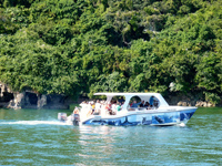 Samana Humpback Whale Watching Sightseeing Tours, Cayo Levantado island Excursions... Marivanna Tours is offering a wide choice of Maritime and Land Excursions.