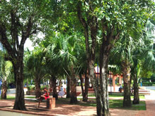 Park in Samana Town, Dominican Republic. Central Park in Samana City, located in front of the City Hall of Samana Town, DR.